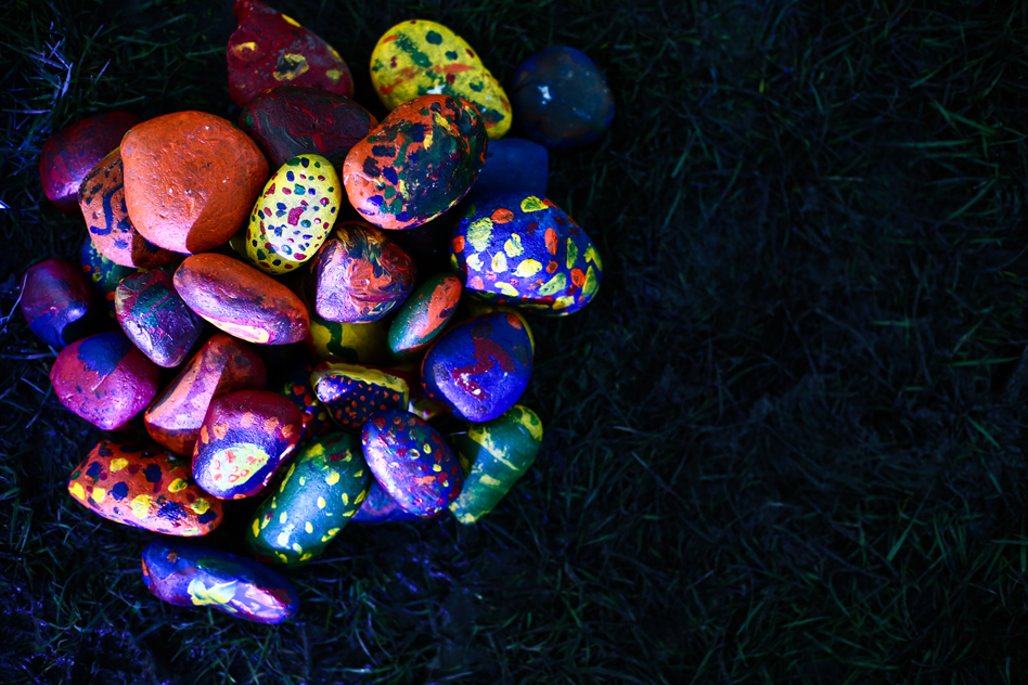 rocks turn into seeds